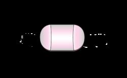Mercury Lumbar Pad